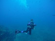 Cours de plongée toulon